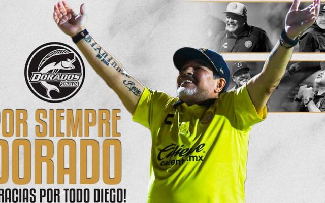 Maradona deja Dorados por motivos de salud - maradona dorados