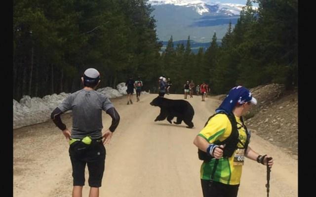 Oso interrumpe carrera en Colorado - Foto de Facebook Quentin Genke