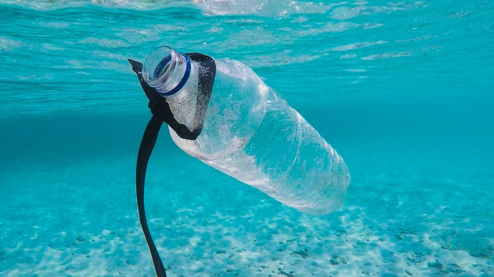 Microplásticos vulneran los ecosistemas marinos - Plástico en el mar. Foto de Brian Yurasits / Unsplash