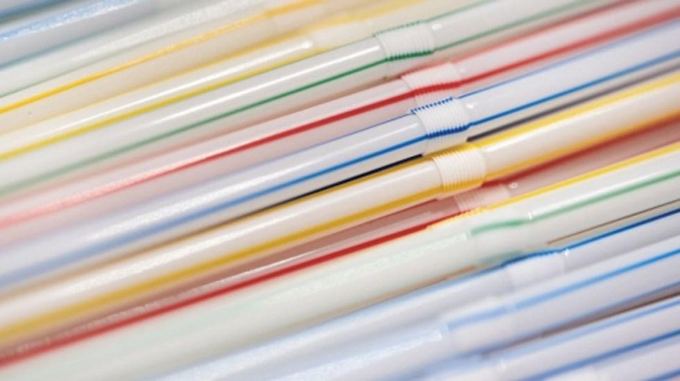 Canadá prohibirá plásticos de un solo uso en 2021 - Foto de EFE