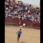 #Video Muere hombre por cornada de toro en España