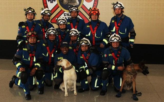Jubilan a Frida, la perra rescatista del 19S - Unidad Canina y Personal de Rescatistas del Cuartel General del Alto Mando. Foto de @SEMAR_mx