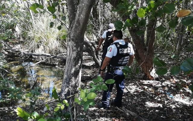 Buscan cuerpo de joven desaparecido en zona de manglar de Cancún - Cancún manglar búsqueda cuerpo joven desaparecido