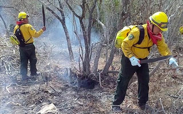 Controlado el 65 por ciento del incendio en reserva de Quintana Roo - incendio