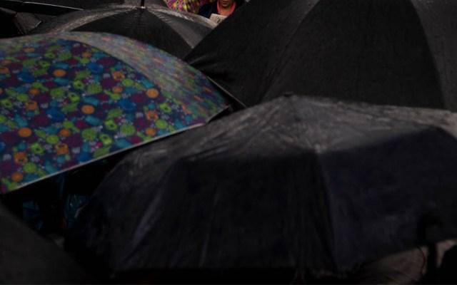 Lluvia derriba cuatro árboles y deja encharcamientos en la capital - Lluvia Ciudad de México