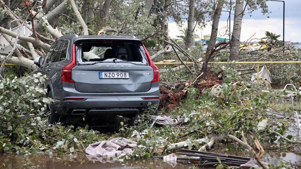 Temporal deja siete muertos y 108 heridos en Grecia. Noticias en tiempo real