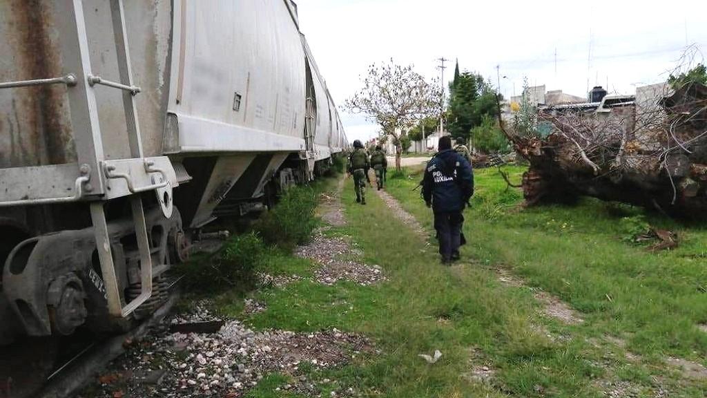 Tren en Puebla. Foto de @Guiesga