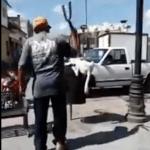 #Video Hombre corta cola a perro con tijeras de podar