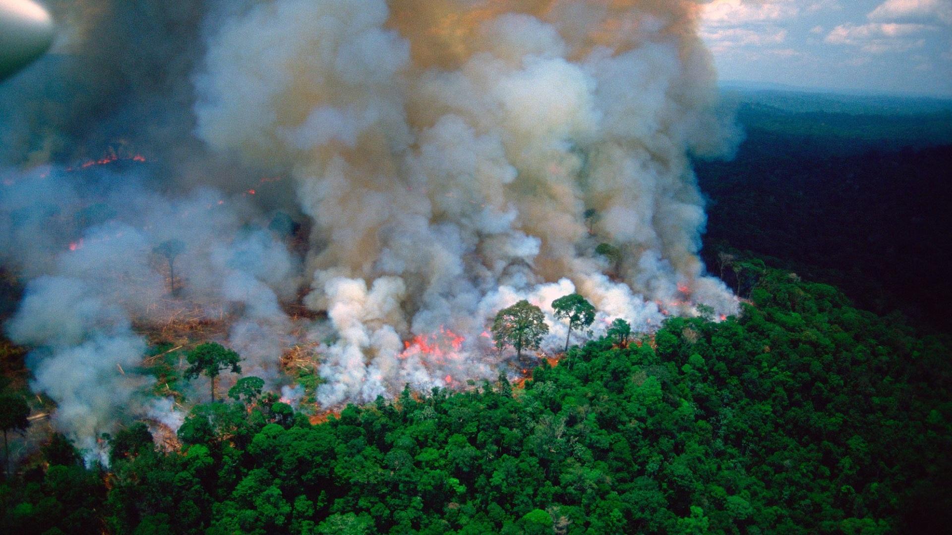 Incendio en la Amazonía. Foto de @EmmanuelMacron