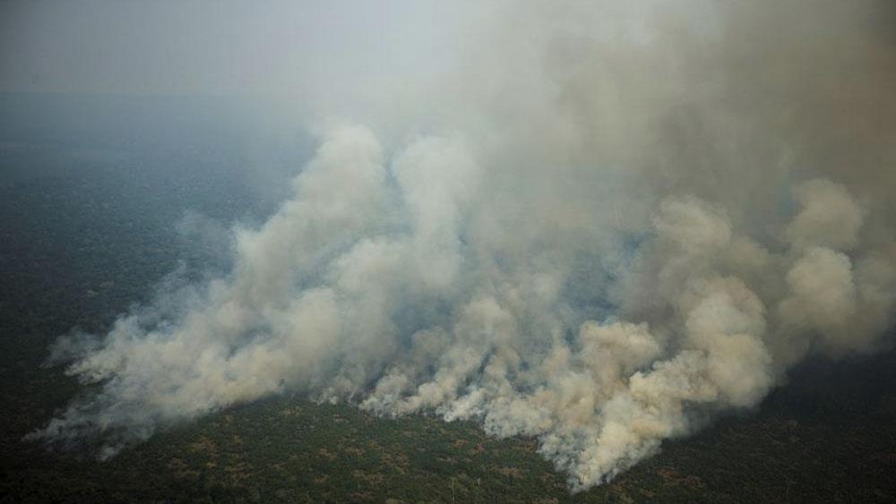 México ofrece apoyo ante incendios en el Amazonas - incendios amazonas