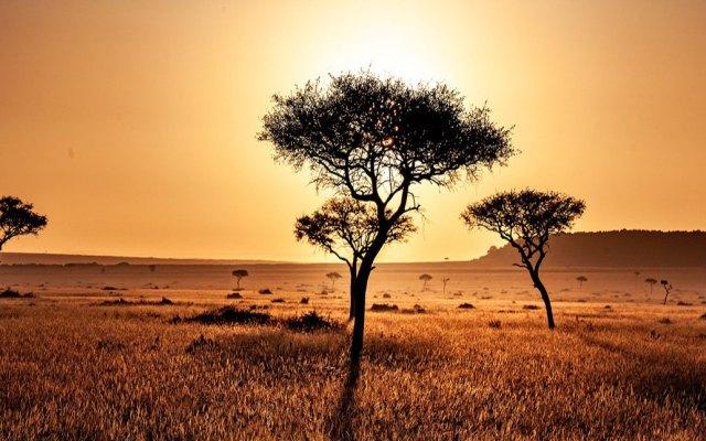 Julio fue el mes más caluroso de los últimos 140 años en el planeta - Paisaje de Kenya. Foto de @NOAANCEIclimate