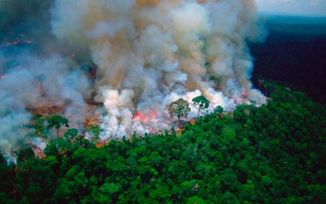 """Incendios en el Amazonas son una """"crisis internacional"""": Macron - Amazonas"""