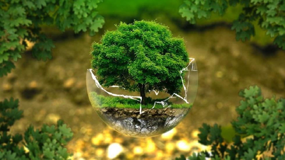 Solo dietas sostenibles podrían salvar al planeta: ONU - Medio Ambiente. Foto de @ONUMedioAmb