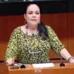 Elección de senadores de Morena fue transparente: Fernández Balboa