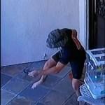 #Video Serpiente de cascabelmuerde a joven afuera de su casa en California