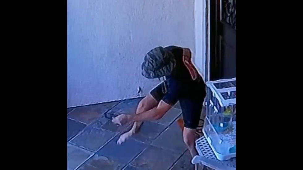 #Video Serpiente de cascabelmuerde a joven afuera de su casa en California - Serpiente de cascabel muerde joven California