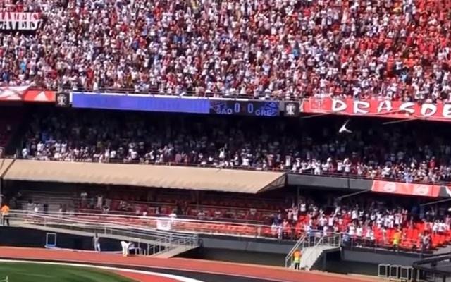 #Video Aficionado cae desde las gradas y aplasta a menor en estadio de Brasil - aficionado