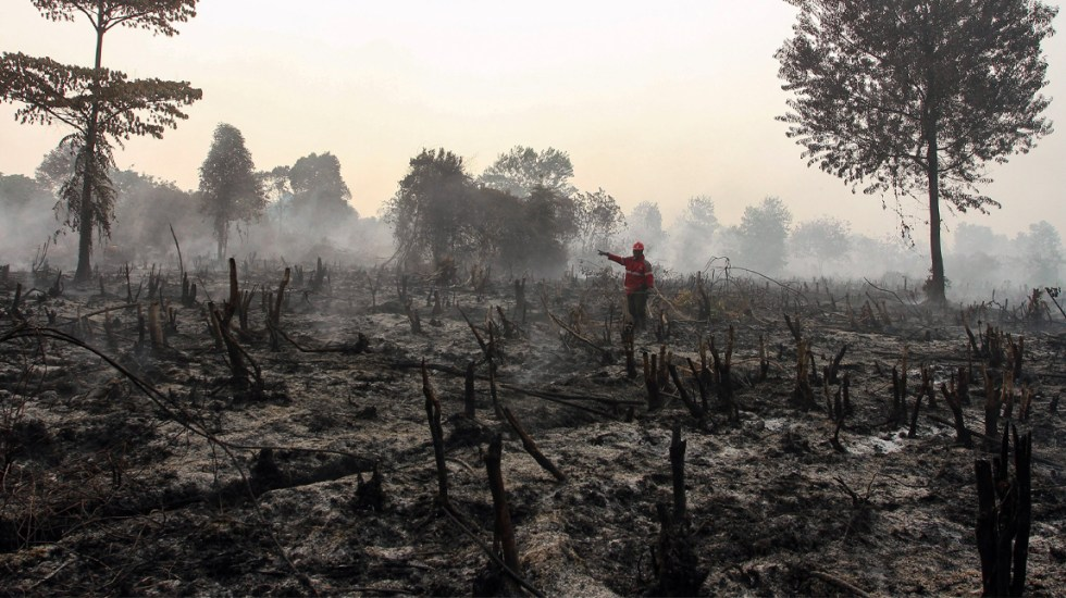 Cierre de cientos de escuelas de Asia por incendios forestales en Indonesia - Incendios Indonesia