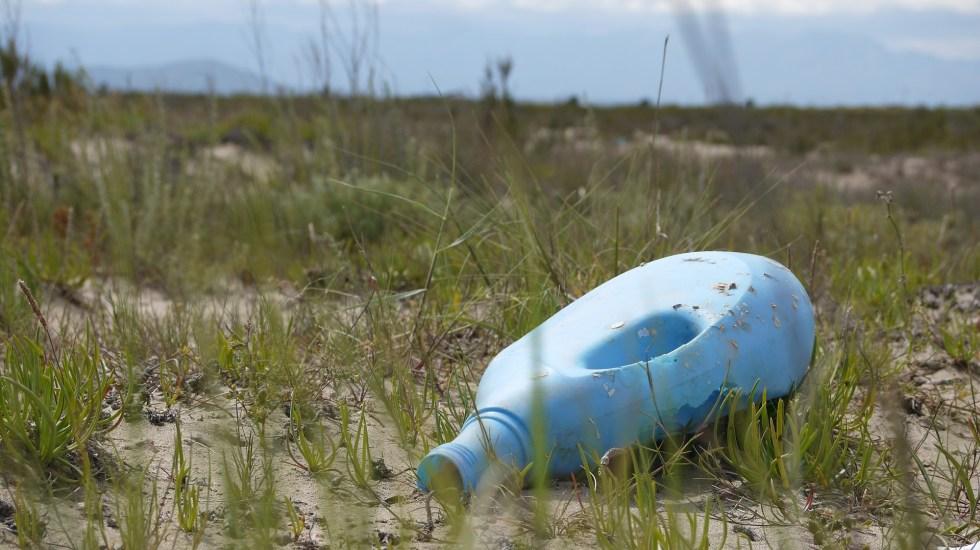 Mexicanos no cambian sus hábitos de compra para proteger el medio ambiente - Foto de PIxabay.