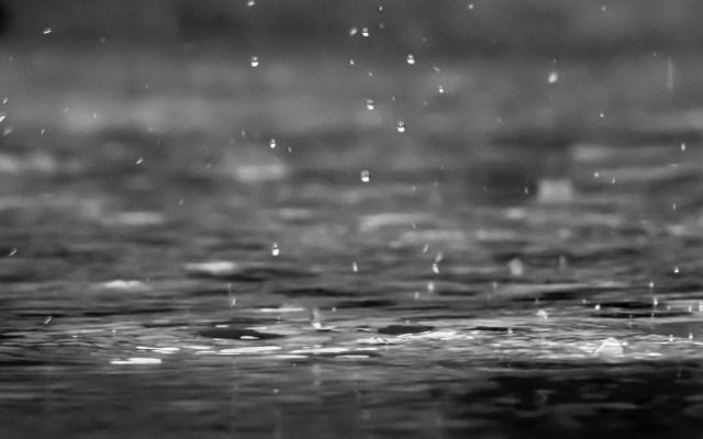 Valle de México padecerá lluvias puntuales fuertes - Lluvia. Foto de Reza Shayestehpour / Unsplash