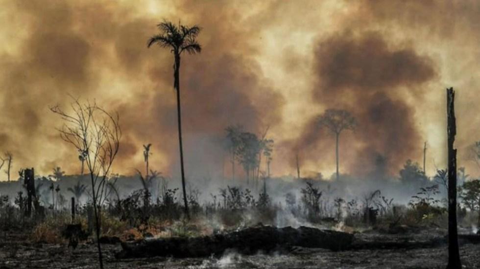 Redes mafiosas impulsan deforestación de la Amazonía - Quema de árboles en Brasil. Foto de HRW