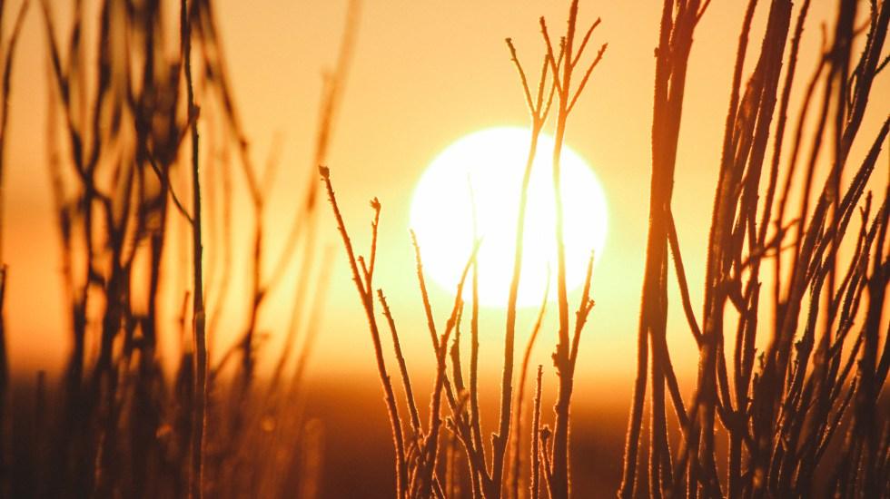 Científicos alertan que cambio climático será peor de lo previsto - Sol. Foto de Jeremy Bishop / Unsplash