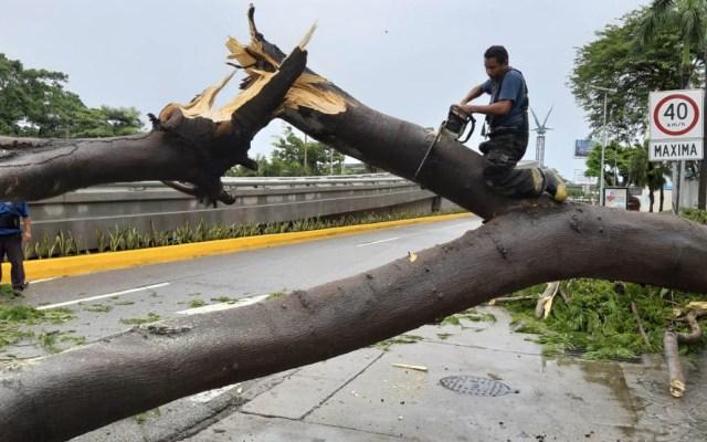 Tormenta Narda provoca afectaciones en varios estados - Tormenta Narda daños Guerrero