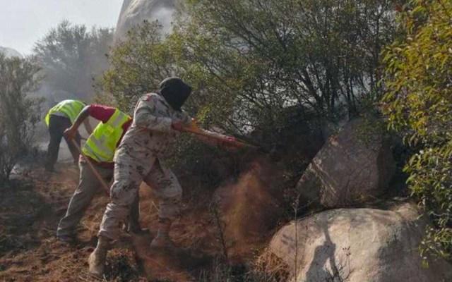 Vientos de Santa Ana aumentan el riesgo de incendios en Baja California - Incendios en Baja California