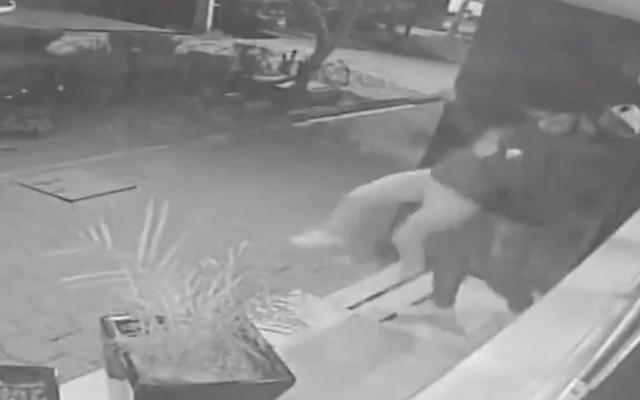 #Video Aplican 'llave china' a menor para robarle celular en Tlatelolco - Ladrón aplica 'llave china' a menor en Tlatelolco. Captura de pantalla