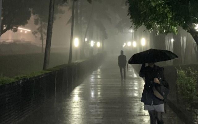 Lluvia deja encharcamientos y caída de árboles en Ciudad de México - Foto de @VanessaVizcarra