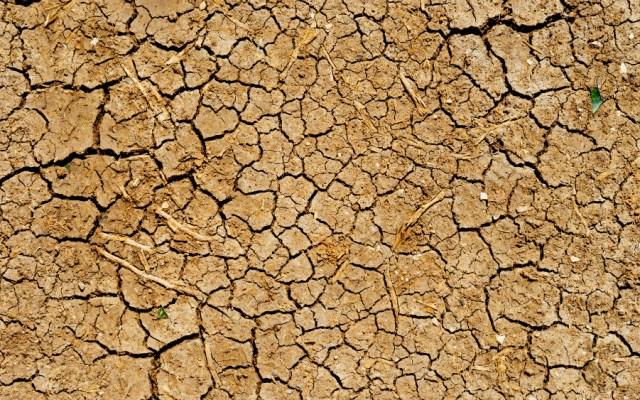 Requieren 17 municipios de Chiapas atención por sequía - Foto de Dan Gold para Unsplash