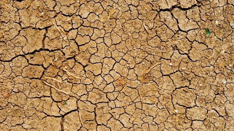 Chile vive su año más seco de los últimos 50 - Foto de Dan Gold para Unsplash