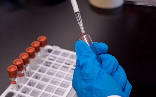 Científicos avanzan en vacuna contra malaria - Avanza desarrollo de vacuna contra la malaria. Foto de Trust