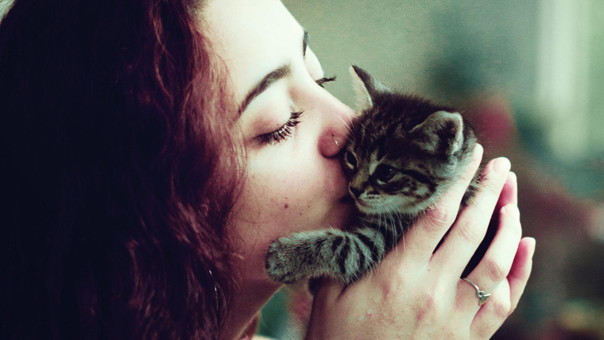 Beso a gato. Foto de Brad Lloyd / Unsplash