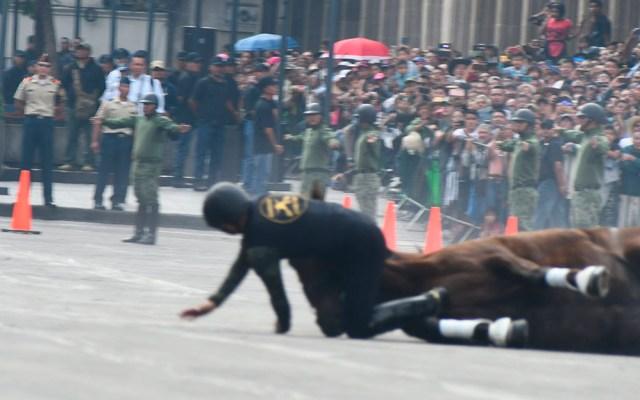 El general Luis Cresencio Sandoval reporta estable a jinete accidentando - Caída de un jinete de la Sedena durante el desfile de la Revolución en la CDMX. Foto de @Luis_C_Sandoval