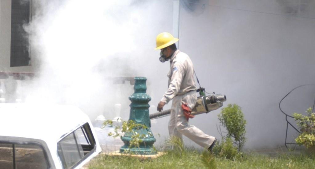 En lo que va de 2019 se han registrado más de 227 mil casos de dengue en México - Foto de El Sol de México