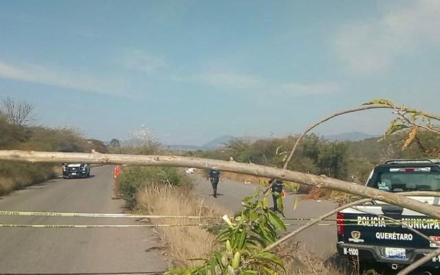Encuentran cadáver embolsado en San Miguelito, Querétaro - Encuentran cadáver embolsado en Querétaro