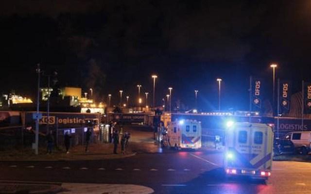 Hallan a 25 personas ocultas en contenedor refrigerado en puerto holandés - Holanda puerto personas ocultas barco
