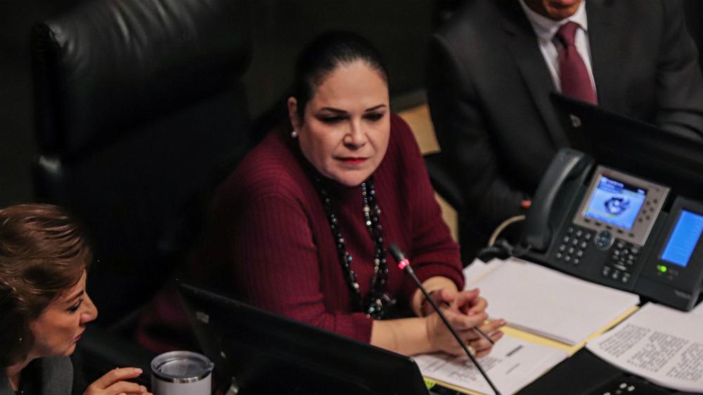 Avala Mónica Fernandez votación para elección de titular de CNDH - Foto de Notimex