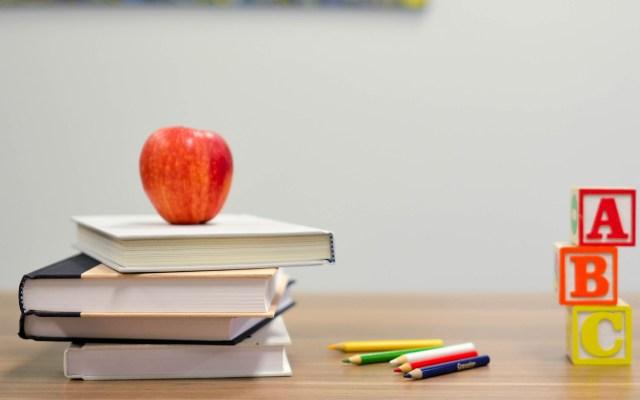 Coparmex sugiere educación con rendición de cuentas para mejorar prueba PISA - Aprendizaje escolar. Foto de Element5 / Unsplash