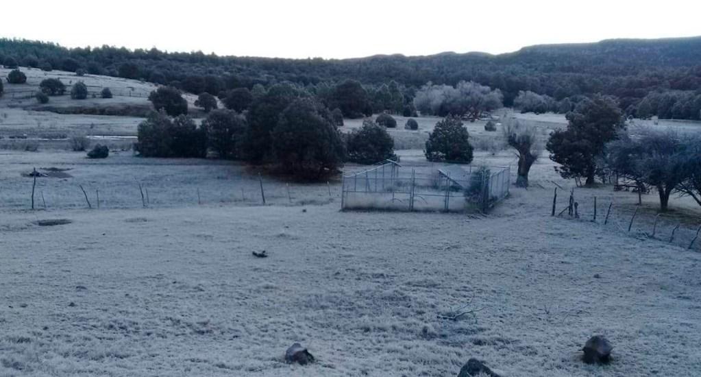 Al menos seis personas han muerto por bajas temperaturas en México - Clima frío en Chihuahua. Foto de @ClimaChihuahua1