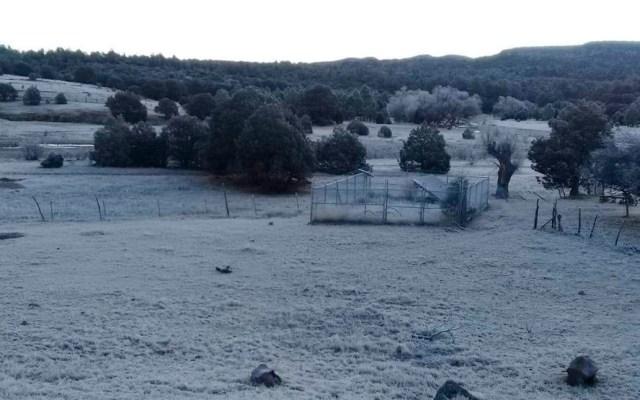 Frente Frío 23 provoca en Chihuahua temperaturas de hasta -7° - Clima frío en Chihuahua. Foto de @ClimaChihuahua1