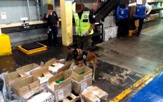#Video Decomisan más de 250 kilos de cocaína en el AICM de avión procedente de Colombia - Decomiso de cocaína en el AICM