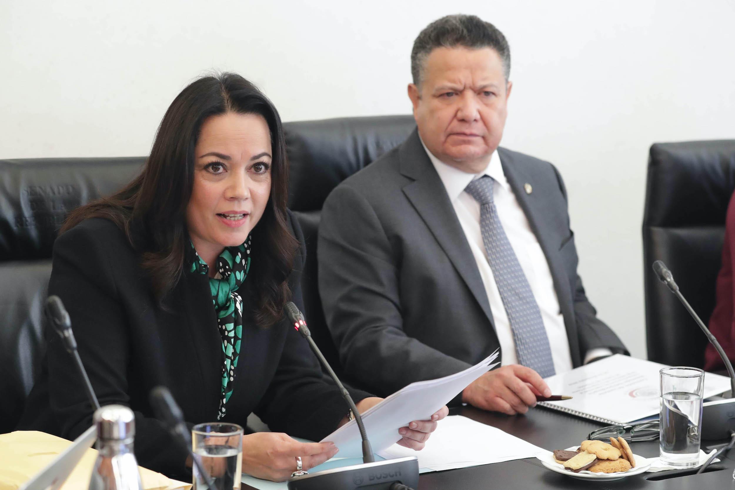 Diana Álvarez Maury en la Reunión de la Comisión de Justicia, comparecencias de las aspirantes a ocupar el cargo de Ministra de la SCJN. Foto de Senado de la República.