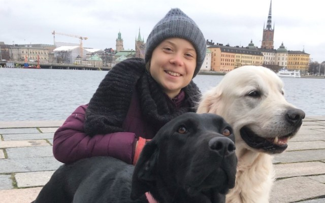 Greta Thunberg regresa Estocolmo tras meses de gira - Greta Thunberg regresa Estocolmo tras meses de gira