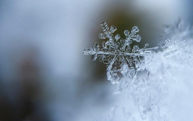 ¿Cuándo y a qué hora empieza el invierno 2019? - Foto de Aaron Burden / Unsplash
