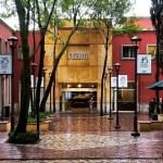 Lamenta ITAM suicidio de estudiante; destaca alternativas de apoyo emocional a alumnos