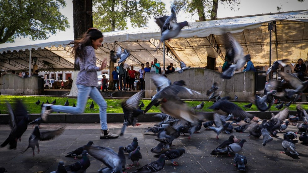 Más de un millón de niños en México tienen altos niveles de plomo - Foto de Notimex