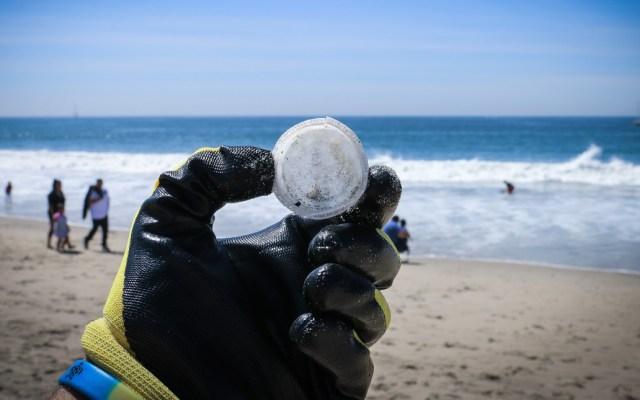 Microplásticos invaden el Caribe mexicano - Microplásticos invaden el Caribe mexicano
