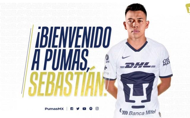 Sebastián Saucedo es el primer refuerzo de Pumas para el Clausura 2020 - Sebastián Saucedo es el primer refuerzo de Pumas para el Clausura 2020